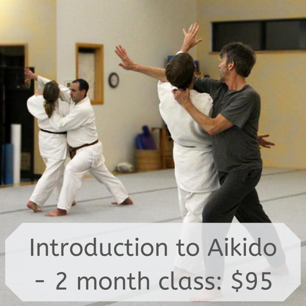 Introduction to Aikido - 2 month class: $95