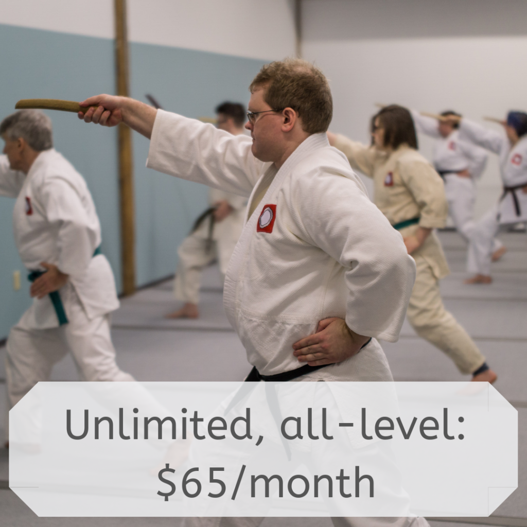 Unlimited, all-level: $65/month