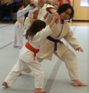 young girl and and adult woman doing an Aikido technique. The girl wears an orange belt and is throwing the adult.
